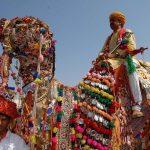 Rajasthan Festival