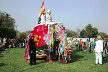 Elephant Festival Rajasthan
